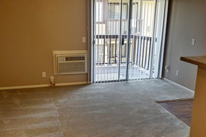 Carpeted living room, tan wall, built-in wall AC, balcony