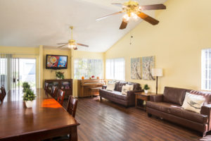 Lounge area, two couches, television, dining table